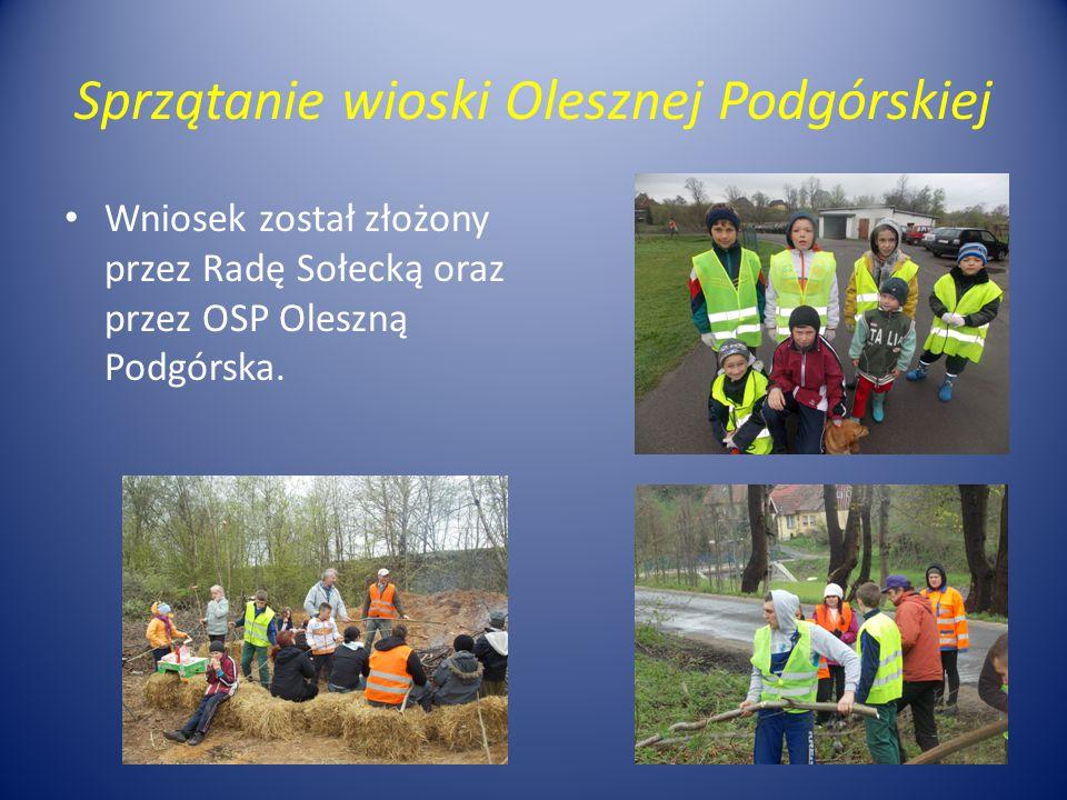 Sprzątanie wioski Olesznej Podgórskiej Wniosek został złożony przez Radę Sołecką oraz przez OSP Oleszną Podgórska.