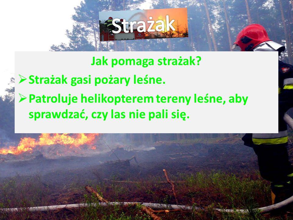 Jak pomaga strażak? SStrażak gasi pożary leśne. PPatroluje helikopterem tereny leśne, aby sprawdzać, czy las nie pali się.
