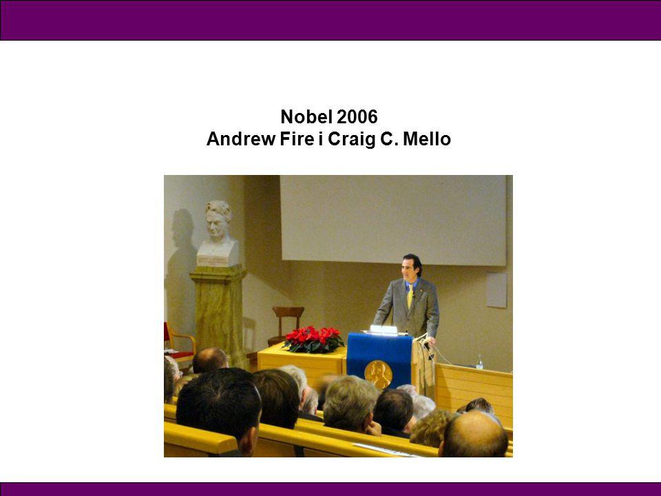 Nobel 2006 Andrew Fire i Craig C. Mello