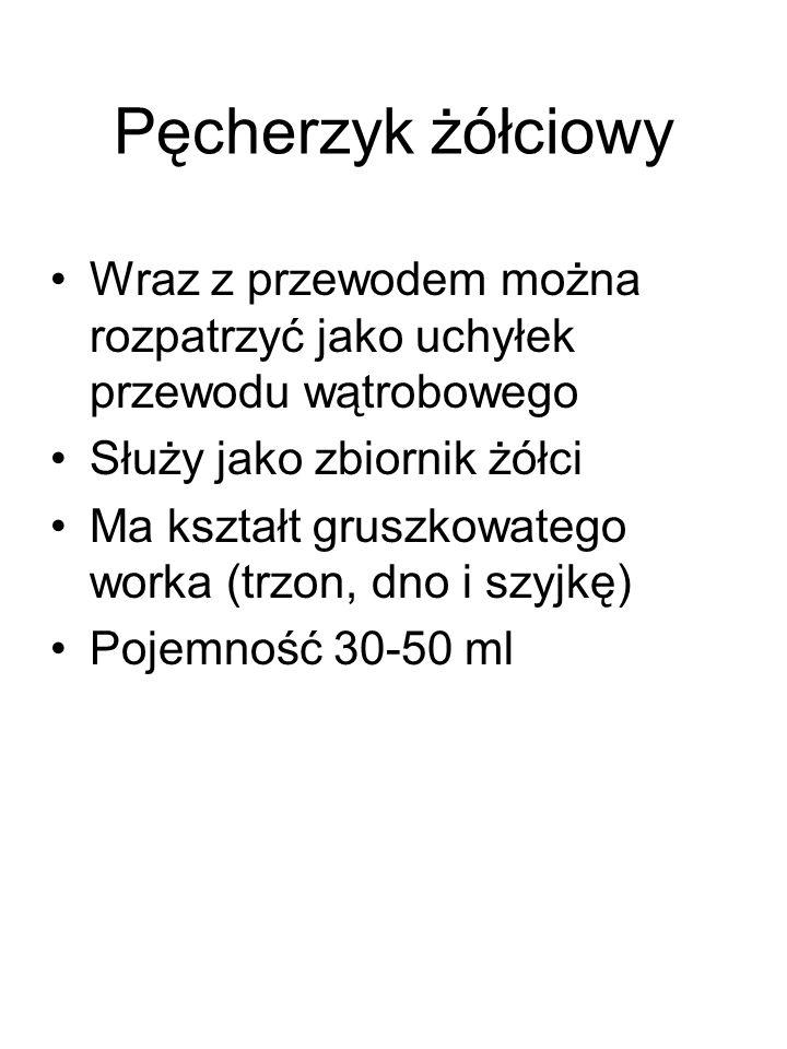 Pęcherzyk żółciowy Wraz z przewodem można rozpatrzyć jako uchyłek przewodu wątrobowego Służy jako zbiornik żółci Ma kształt gruszkowatego worka (trzon