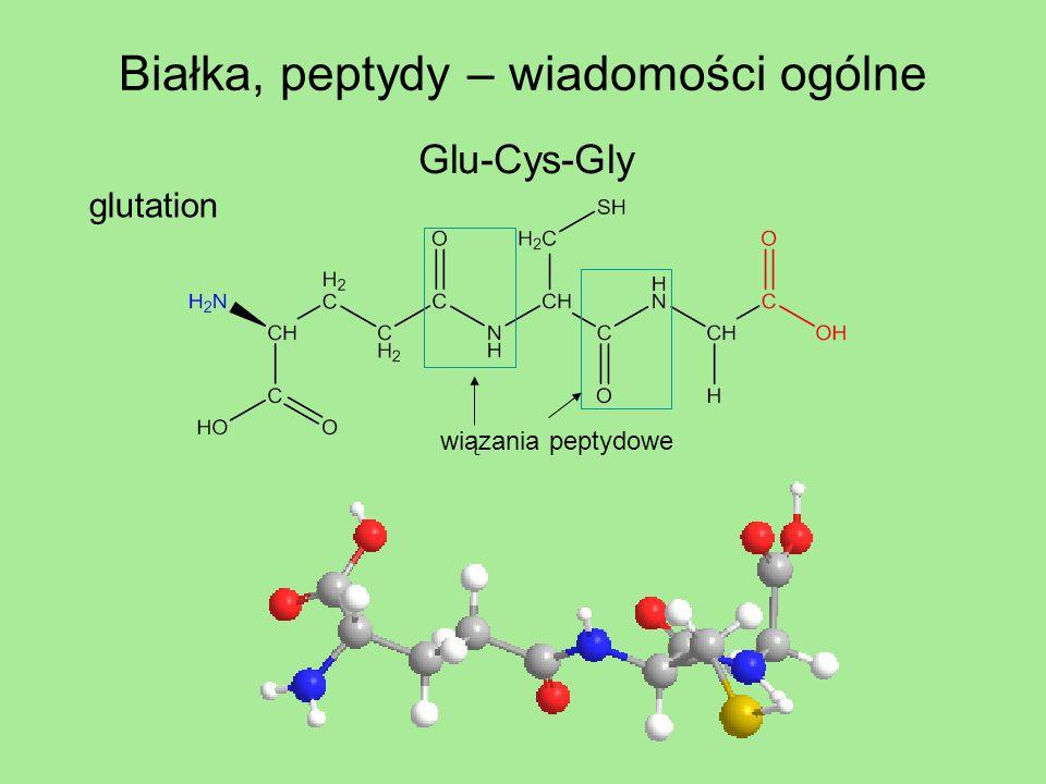 Białka, peptydy – wiadomości ogólne Glu-Cys-Gly glutation wiązania peptydowe