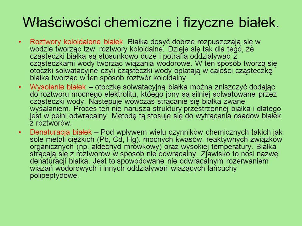 Właściwości chemiczne i fizyczne białek. Roztwory koloidalene białek. Białka dosyć dobrze rozpuszczają się w wodzie tworząc tzw. roztwory koloidalne.
