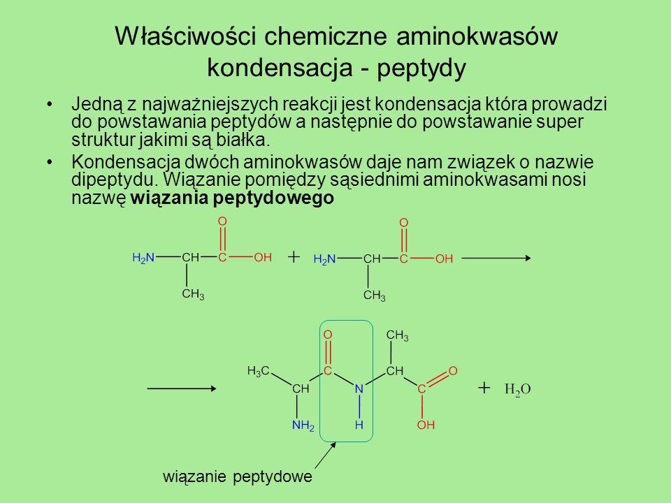 Właściwości chemiczne aminokwasów kondensacja - peptydy Wiązanie peptydowe można zhydrolizować zarówno w warunkach kwasowych, zasadowych jak i w obojętnych z użyciem odpowiednich enzymów.