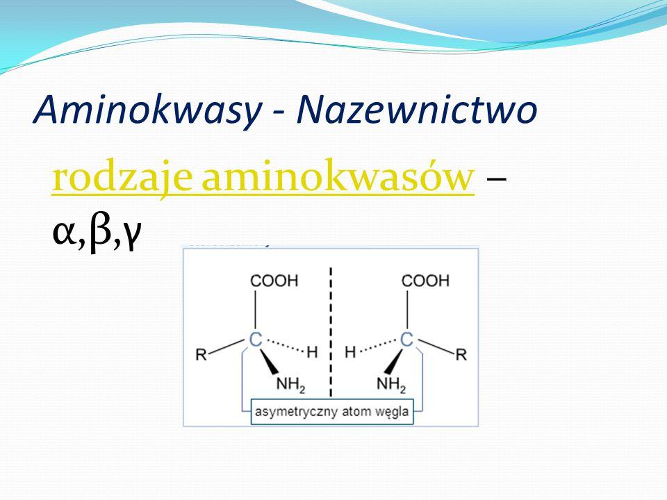 Aminokwasy - Nazewnictwo rodzaje aminokwasówrodzaje aminokwasów – α,β,γ