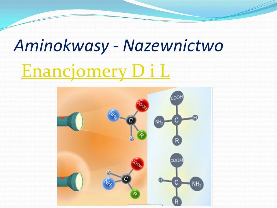Aminokwasy - Nazewnictwo Enancjomery D i L