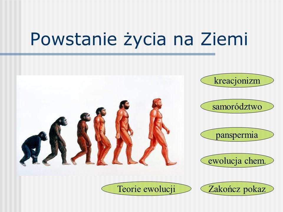Powstanie życia na Ziemi kreacjonizm samorództwo panspermia ewolucja chem. Zakończ pokazTeorie ewolucji