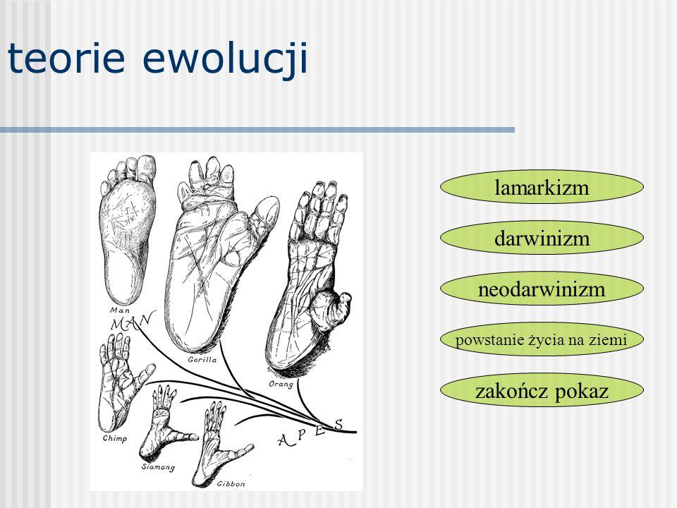 teorie ewolucji darwinizm lamarkizm powstanie życia na ziemi neodarwinizm zakończ pokaz