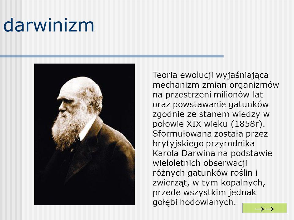 darwinizm Teoria ewolucji wyjaśniająca mechanizm zmian organizmów na przestrzeni milionów lat oraz powstawanie gatunków zgodnie ze stanem wiedzy w poł
