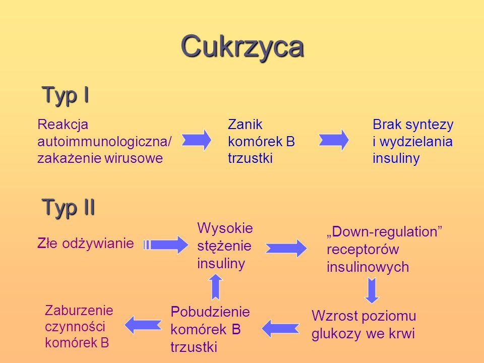 Cukrzyca Typ I Typ II Reakcja autoimmunologiczna/ zakażenie wirusowe Zanik komórek B trzustki Brak syntezy i wydzielania insuliny Złe odżywianie Wysok