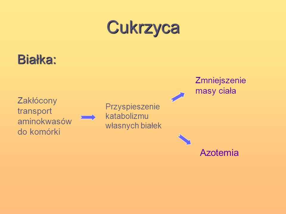 Cukrzyca Białka: Zakłócony transport aminokwasów do komórki Przyspieszenie katabolizmu własnych białek Azotemia Zmniejszenie masy ciała