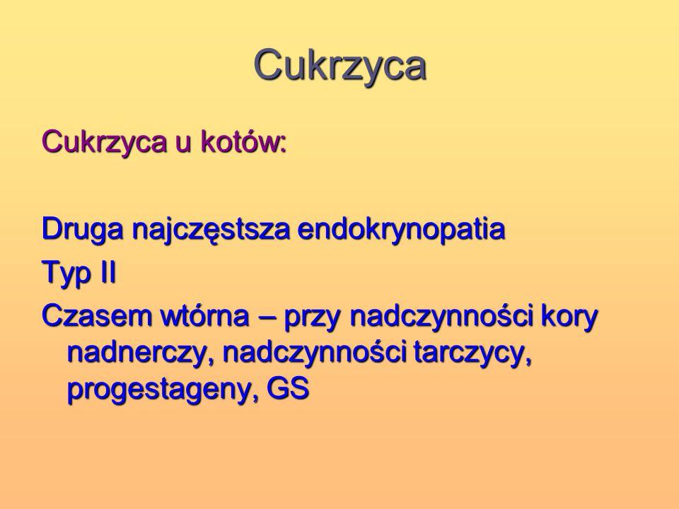 Cukrzyca Cukrzyca u kotów: Druga najczęstsza endokrynopatia Typ II Czasem wtórna – przy nadczynności kory nadnerczy, nadczynności tarczycy, progestage