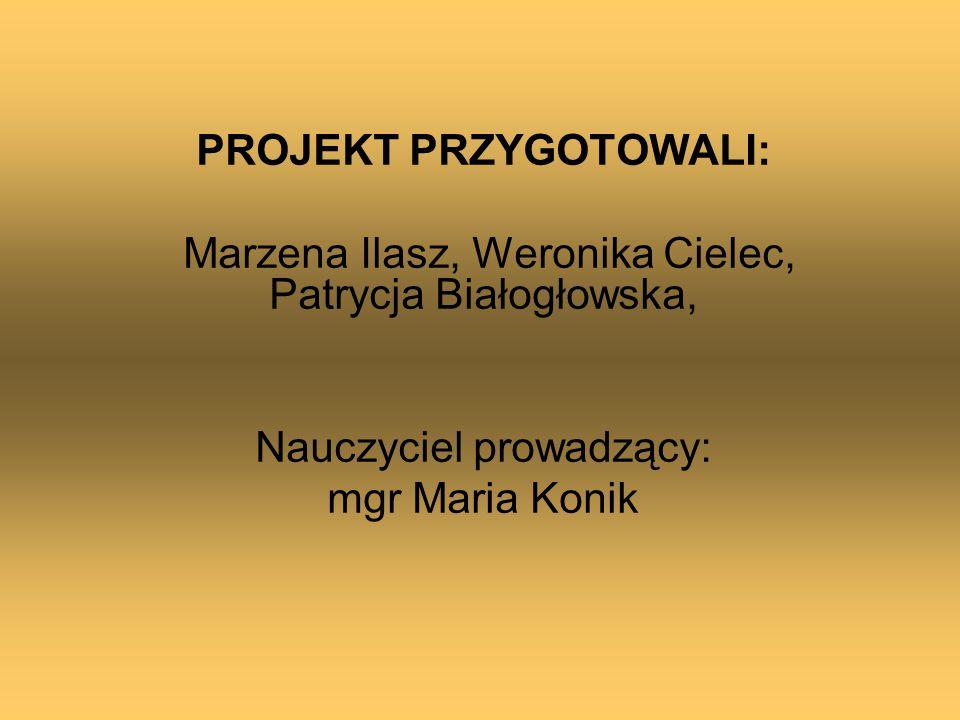 PROJEKT PRZYGOTOWALI: Marzena Ilasz, Weronika Cielec, Patrycja Białogłowska, Nauczyciel prowadzący: mgr Maria Konik