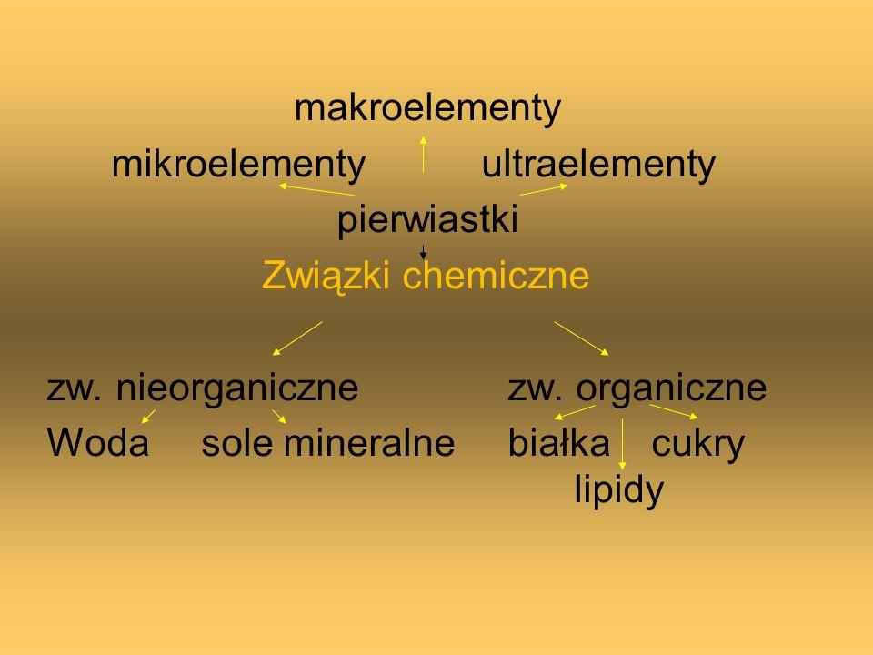 makroelementy mikroelementy ultraelementy pierwiastki Związki chemiczne zw. nieorganiczne zw. organiczne Woda sole mineralne białka cukry lipidy