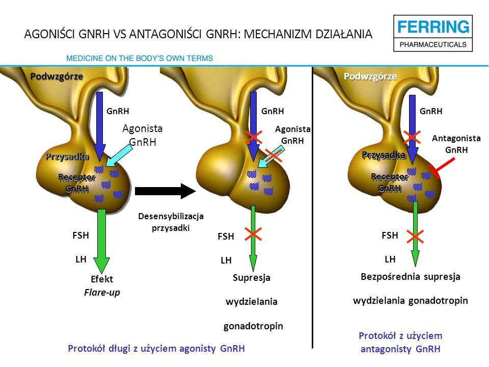 AGONIŚCI GNRH VS ANTAGONIŚCI GNRH: MECHANIZM DZIAŁANIA Efekt Flare-up Desensybilizacja przysadki Protokół długi z użyciem agonisty GnRH Przysadka GnRH Supresja wydzielania gonadotropin FSH LH Receptor GnRH Agonista GnRH GnRH FSH LH Protokół z użyciem antagonisty GnRH PrzysadkaPrzysadka GnRH Bezpośrednia supresja wydzielania gonadotropin Receptor GnRH Antagonista GnRH FSH LH Agonista GnRH PodwzgórzePodwzgórze