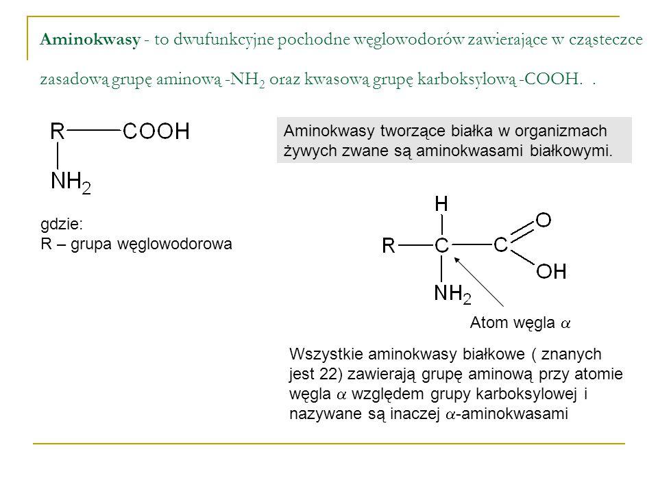 Aminokwasy - to dwufunkcyjne pochodne węglowodorów zawierające w cząsteczce zasadową grupę aminową -NH 2 oraz kwasową grupę karboksylową -COOH.. gdzie
