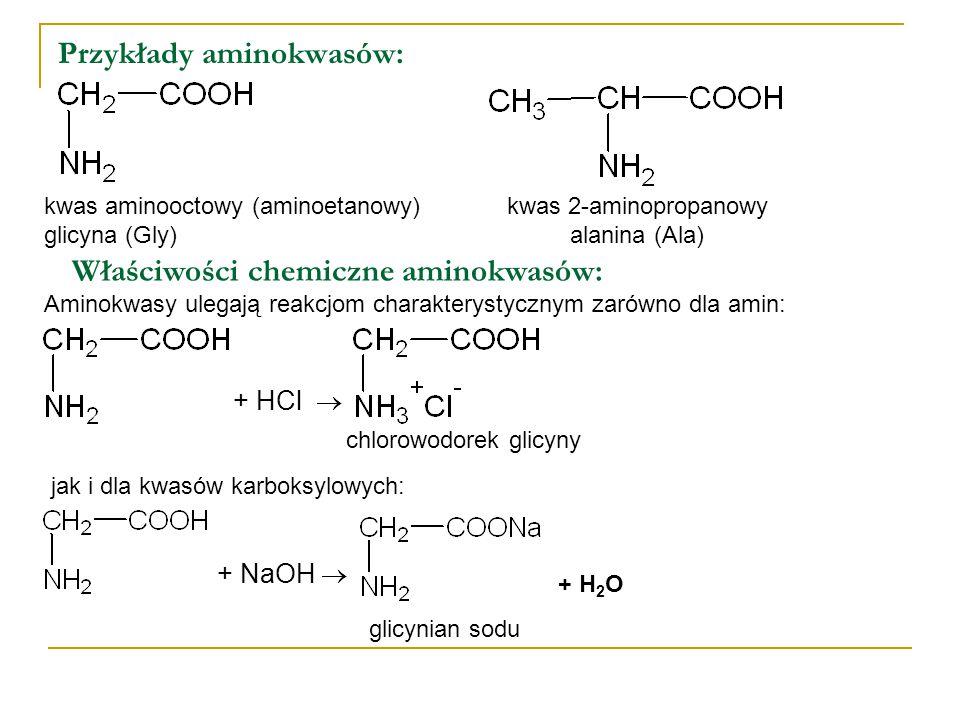 Przykłady aminokwasów: kwas aminooctowy (aminoetanowy) glicyna (Gly) kwas 2-aminopropanowy alanina (Ala) Właściwości chemiczne aminokwasów: Aminokwasy