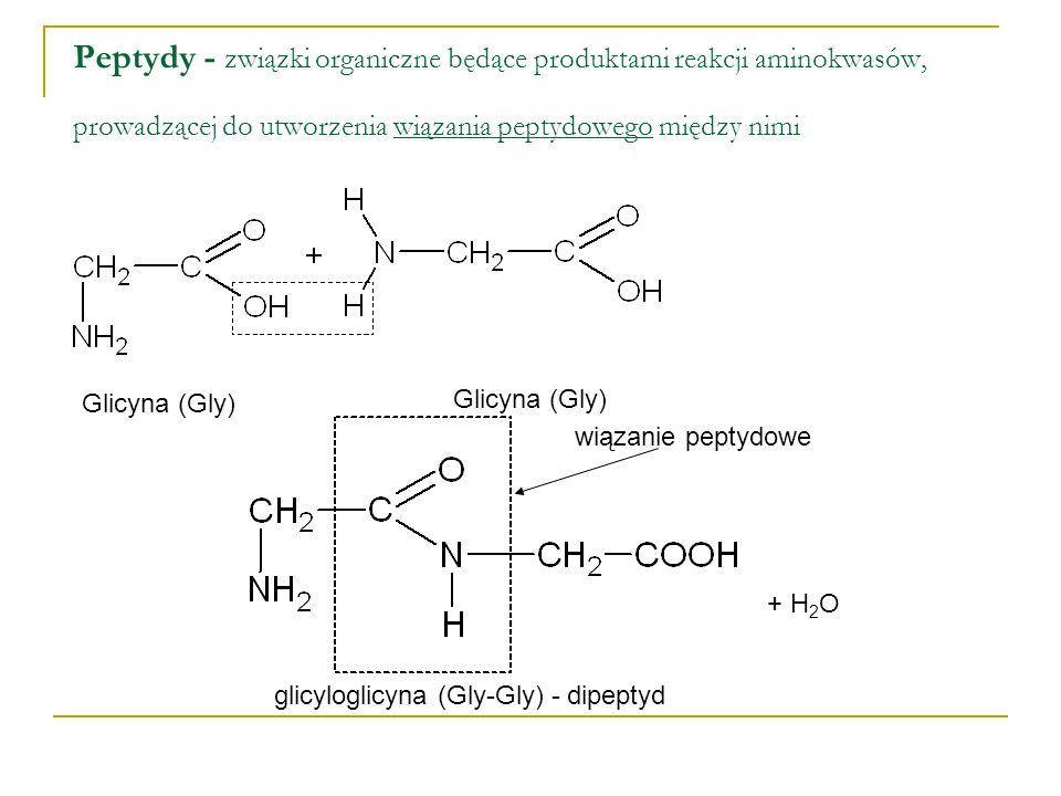 Peptydy - związki organiczne będące produktami reakcji aminokwasów, prowadzącej do utworzenia wiązania peptydowego między nimi Glicyna (Gly) wiązanie