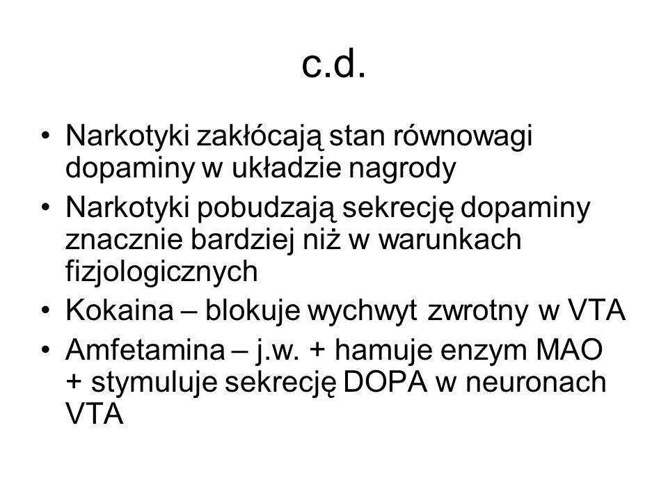 c.d. Narkotyki zakłócają stan równowagi dopaminy w układzie nagrody Narkotyki pobudzają sekrecję dopaminy znacznie bardziej niż w warunkach fizjologic