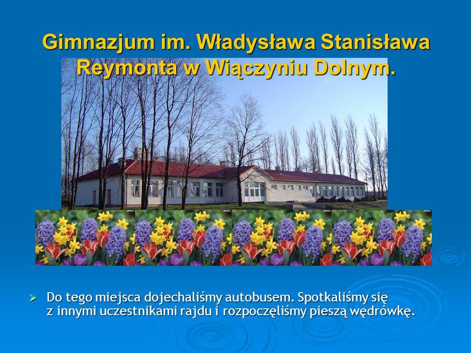 Trasa rajdu :  SP nr 199,  Wiączyń Dolny,  Las Wiączyński,  Jordanów,  Leśnictwo Gałków.
