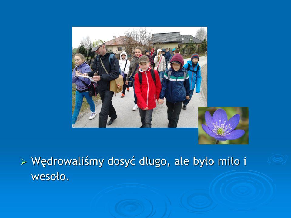 Gimnazjum im. Władysława Stanisława Reymonta w Wiączyniu Dolnym.