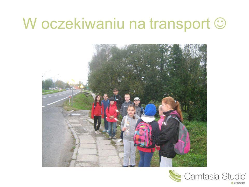 W oczekiwaniu na transport