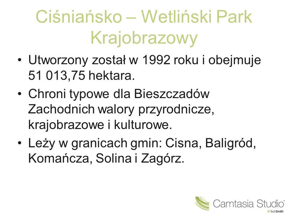 Ciśniańsko – Wetliński Park Krajobrazowy Utworzony został w 1992 roku i obejmuje 51 013,75 hektara. Chroni typowe dla Bieszczadów Zachodnich walory pr