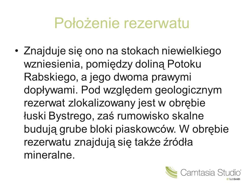 """Rezerwat """"Gołoborze"""
