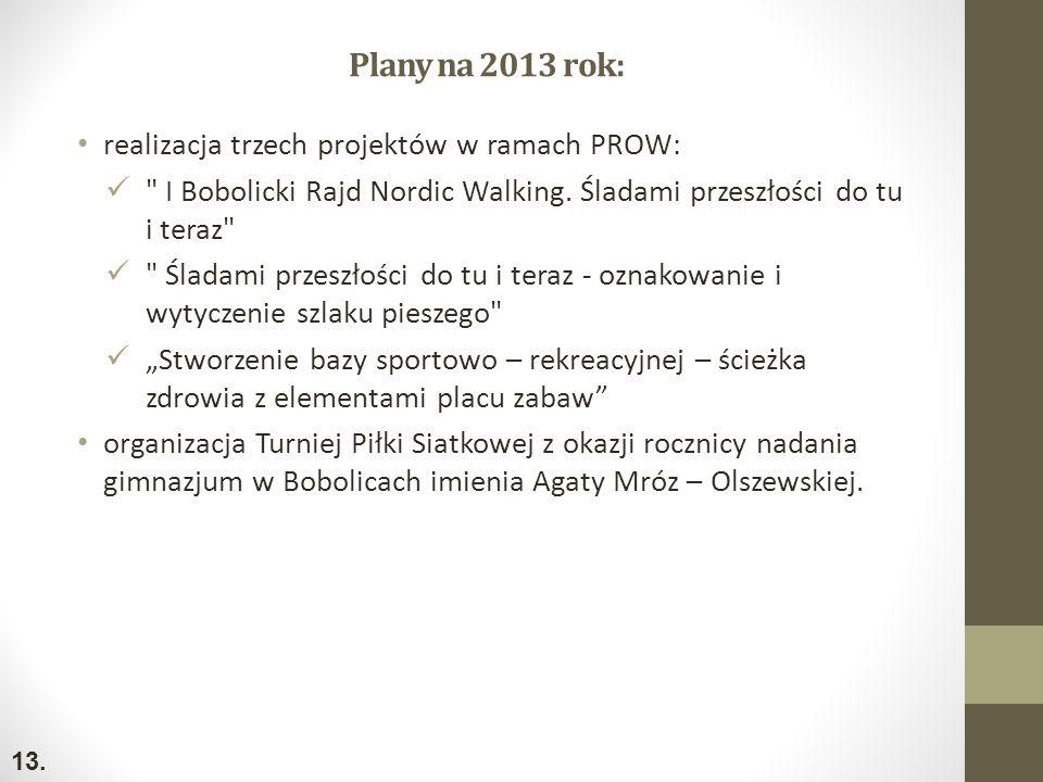 Plany na 2013 rok: realizacja trzech projektów w ramach PROW: