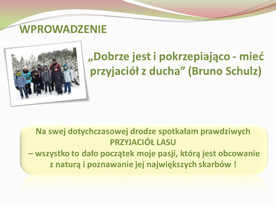 Opracowała: Magdalena Sobieraj SP 61 Bydgoszcz Przyjaciel lasu