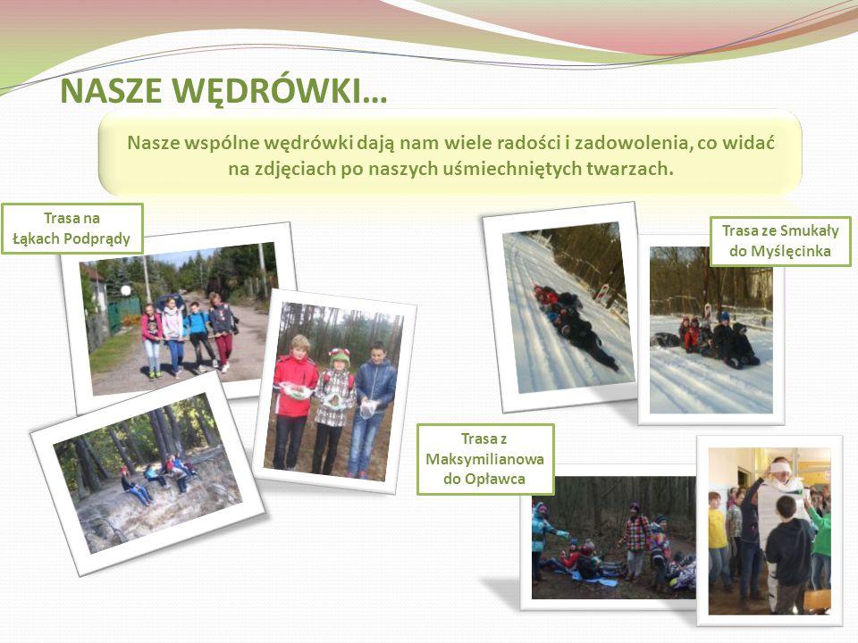 Zaliczyć niebieski szlak Brdy ze Smukały do Myślęcinka ( 7km), ale przy 15 stopniowym mrozie! Kajak-pomnik postawiony na pamiątkę pobytu w tym miejscu