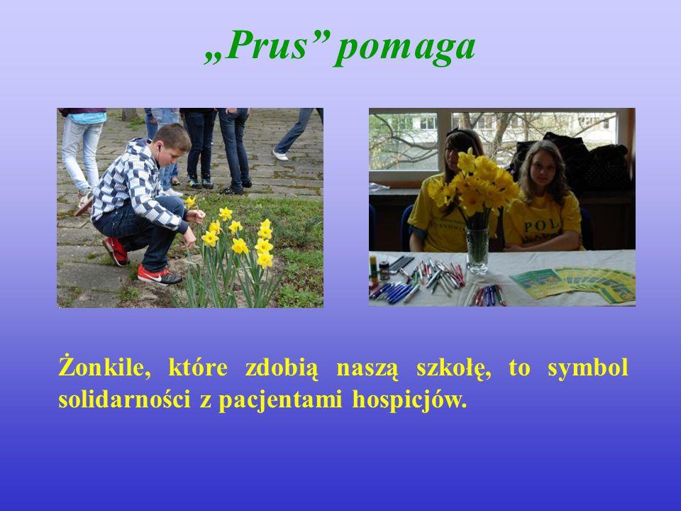 """""""Prus"""" pomaga Żonkile, które zdobią naszą szkołę, to symbol solidarności z pacjentami hospicjów."""
