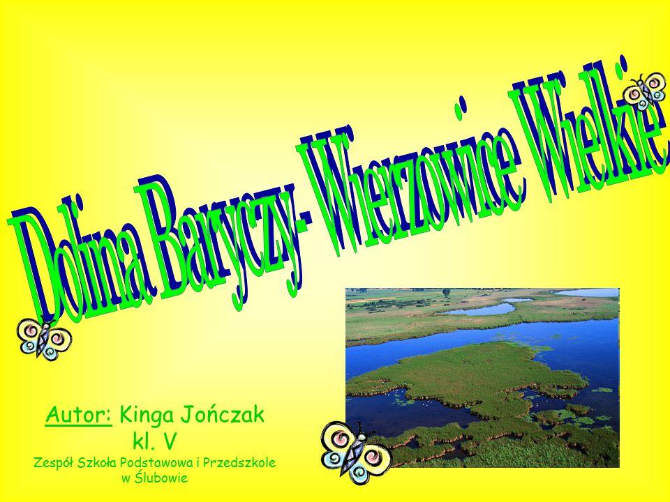Autor: Kinga Jończak kl. V Zespół Szkoła Podstawowa i Przedszkole w Ślubowie