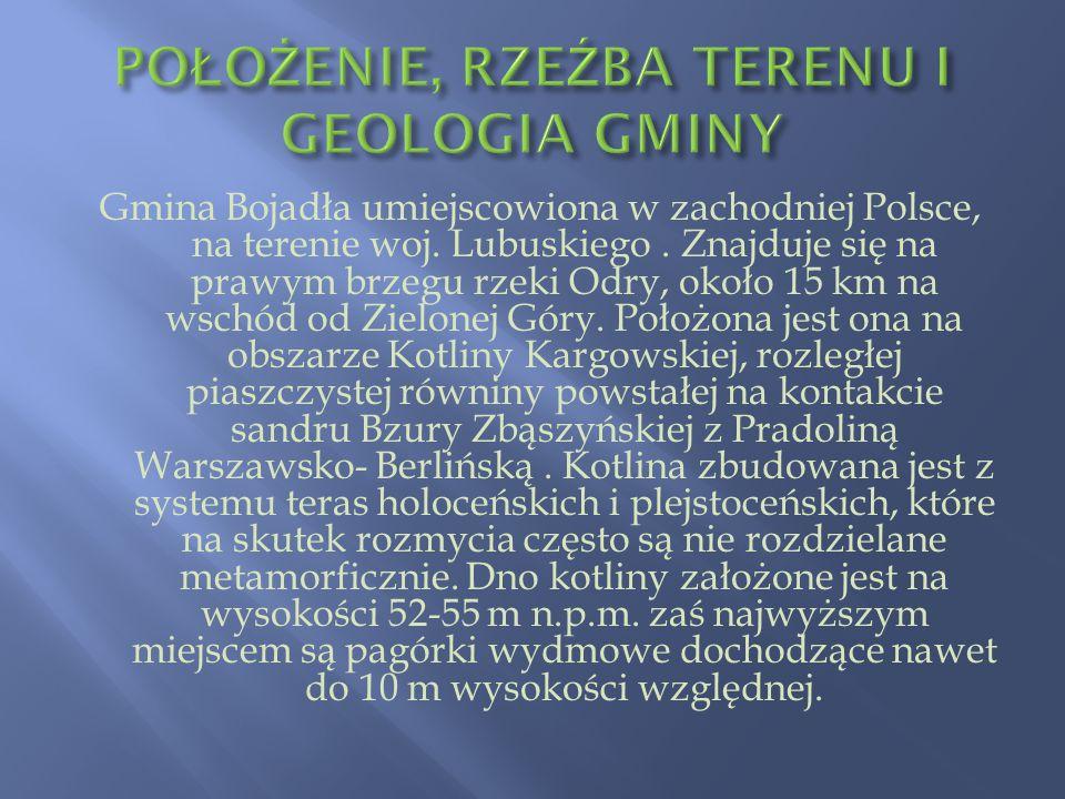 Gmina Bojadła umiejscowiona w zachodniej Polsce, na terenie woj. Lubuskiego. Znajduje się na prawym brzegu rzeki Odry, około 15 km na wschód od Zielon