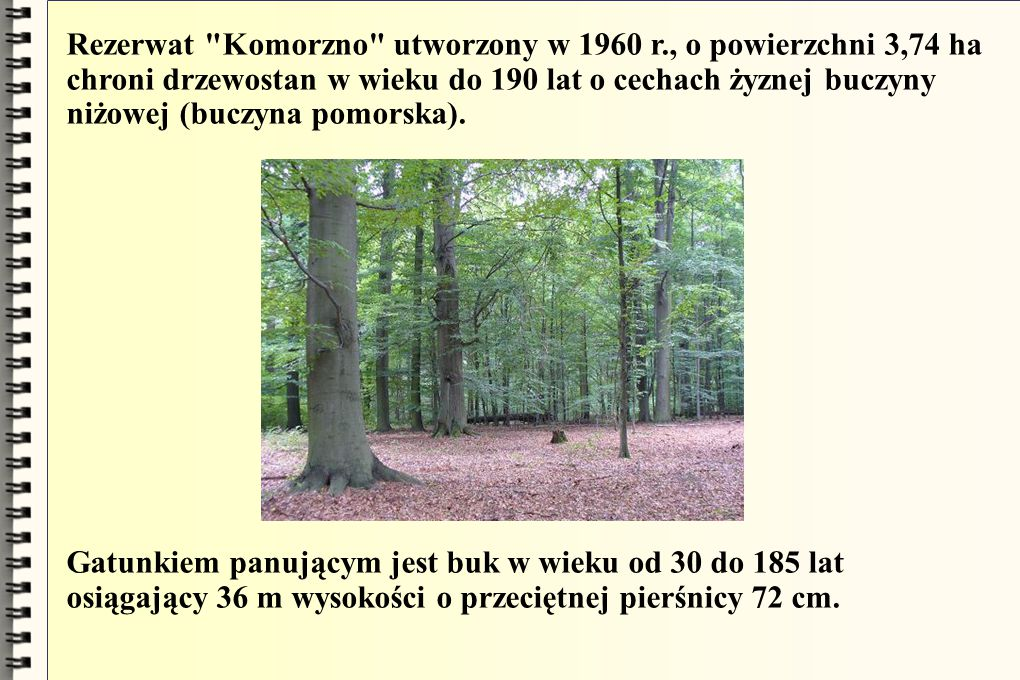 Rezerwat Komorzno utworzony w 1960 r., o powierzchni 3,74 ha chroni drzewostan w wieku do 190 lat o cechach żyznej buczyny niżowej (buczyna pomorska).