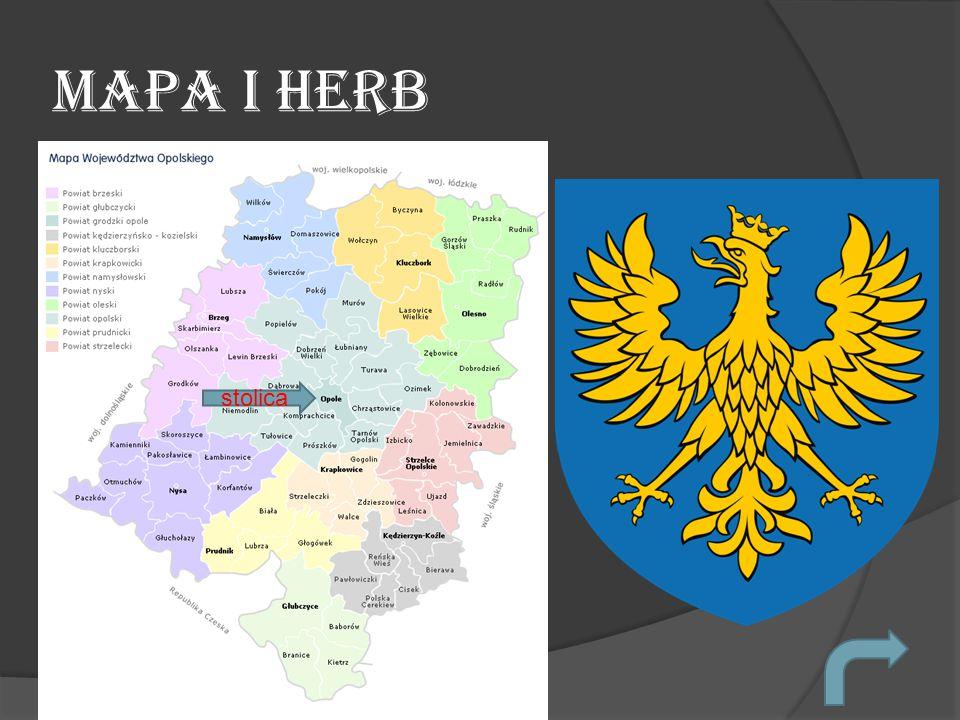 Informacje Nazwa województwa StolicaPowierzchniaMniejszości narodowe Gwara/Język OpolskieOpole9411,87 km²NiemcyPolski Gwara śląska
