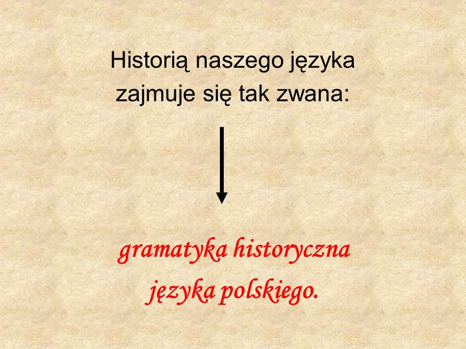 Historią naszego języka zajmuje się tak zwana: gramatyka historyczna języka polskiego.