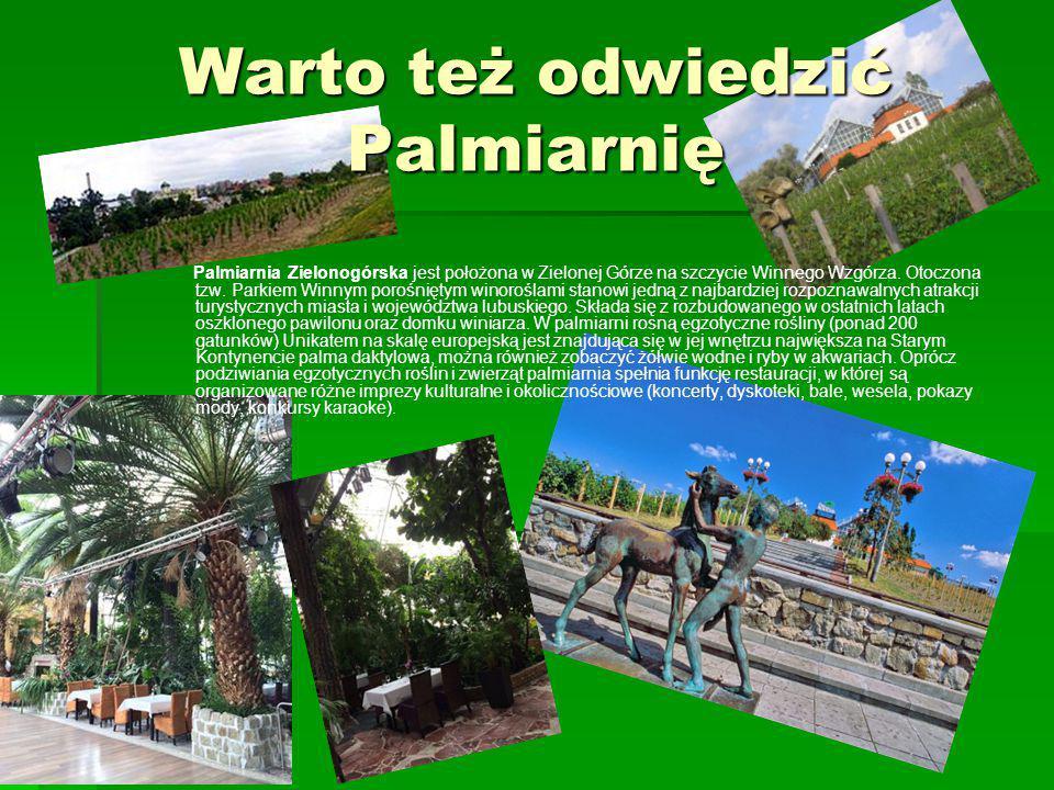 Warto też odwiedzić Palmiarnię Palmiarnia Zielonogórska jest położona w Zielonej Górze na szczycie Winnego Wzgórza. Otoczona tzw. Parkiem Winnym poroś