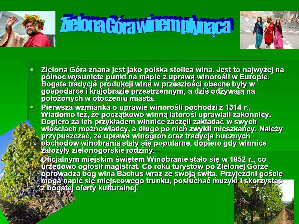  Zielona Góra znana jest jako polska stolica wina. Jest to najwyżej na północ wysunięte punkt na mapie z uprawą winorośli w Europie. Bogate tradycje