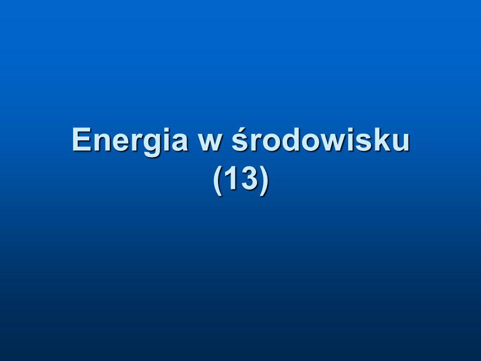 Energia w środowisku (13)