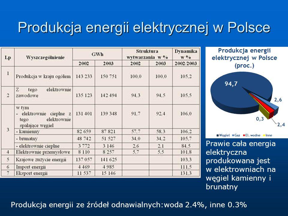 Produkcja energii elektrycznej w Polsce Prawie cała energia elektryczna produkowana jest w elektrowniach na węgiel kamienny i brunatny Produkcja energii ze źródeł odnawialnych:woda 2.4%, inne 0.3%