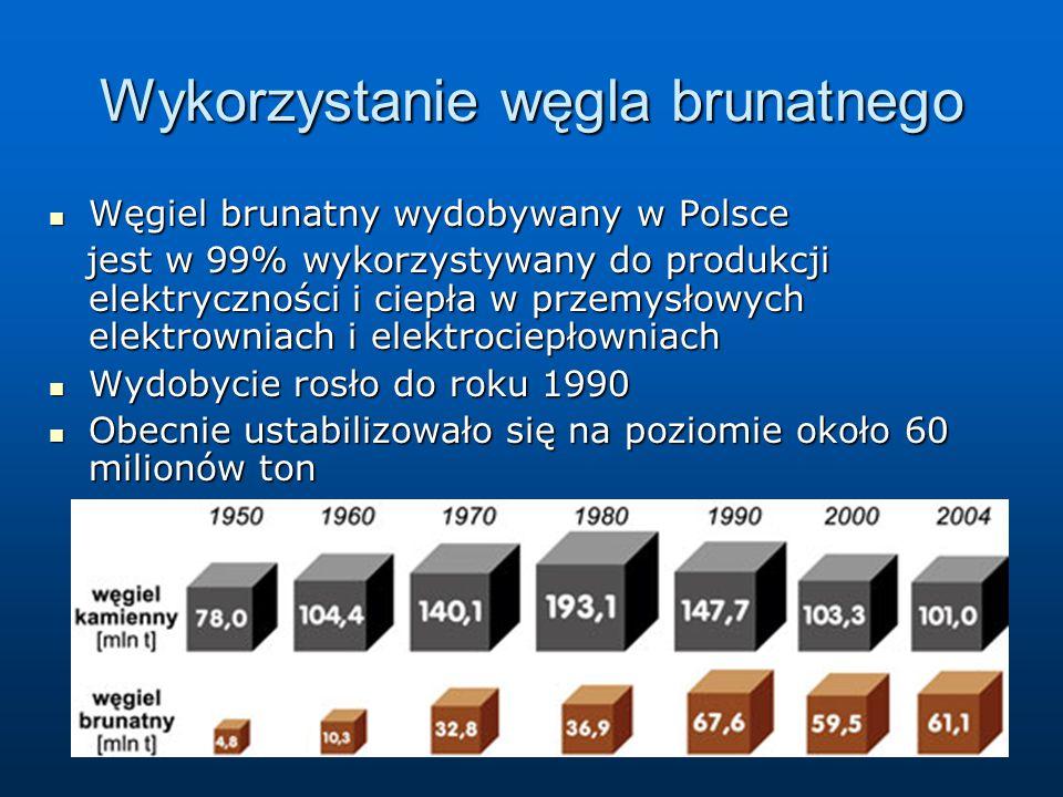 Wykorzystanie węgla brunatnego Węgiel brunatny wydobywany w Polsce Węgiel brunatny wydobywany w Polsce jest w 99% wykorzystywany do produkcji elektryczności i ciepła w przemysłowych elektrowniach i elektrociepłowniach jest w 99% wykorzystywany do produkcji elektryczności i ciepła w przemysłowych elektrowniach i elektrociepłowniach Wydobycie rosło do roku 1990 Wydobycie rosło do roku 1990 Obecnie ustabilizowało się na poziomie około 60 milionów ton Obecnie ustabilizowało się na poziomie około 60 milionów ton