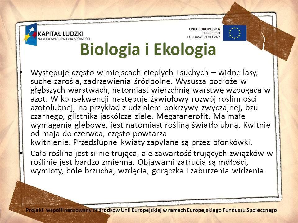Biologia i Ekologia Występuje często w miejscach ciepłych i suchych – widne lasy, suche zarośla, zadrzewienia śródpolne. Wysusza podłoże w głębszych w