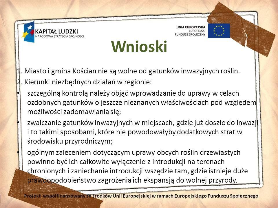 Wnioski 1. Miasto i gmina Kościan nie są wolne od gatunków inwazyjnych roślin. 2. Kierunki niezbędnych działań w regionie: szczególną kontrolą należy