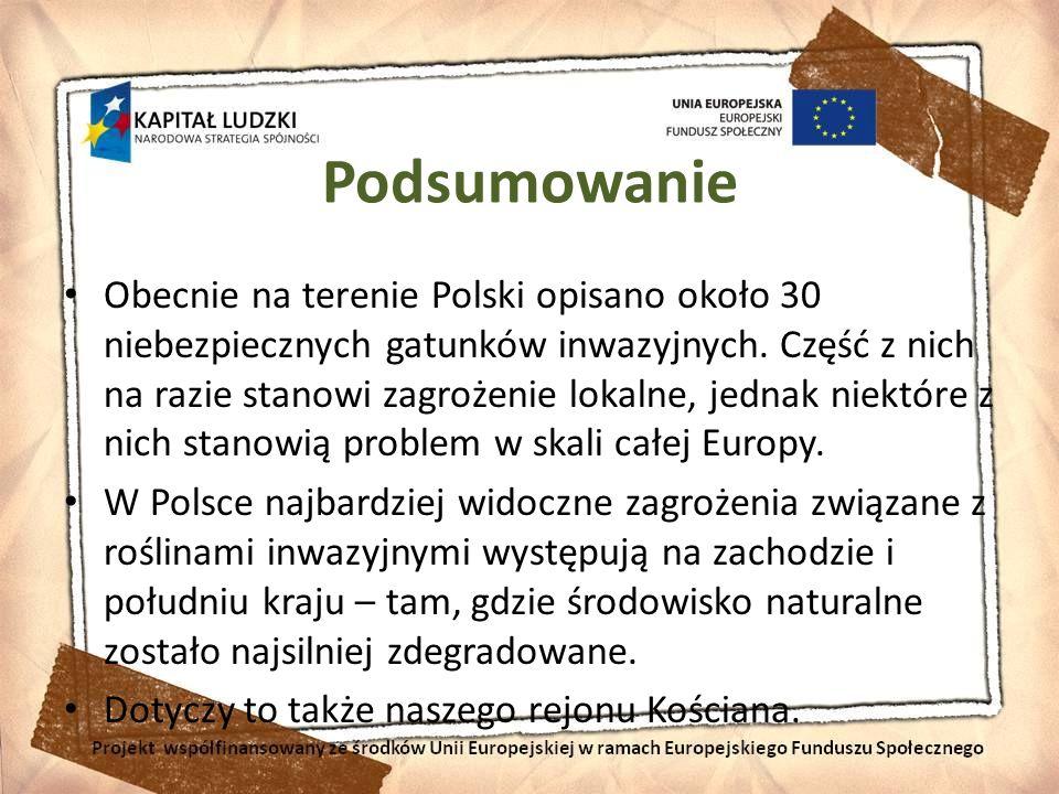 Podsumowanie Obecnie na terenie Polski opisano około 30 niebezpiecznych gatunków inwazyjnych. Część z nich na razie stanowi zagrożenie lokalne, jednak