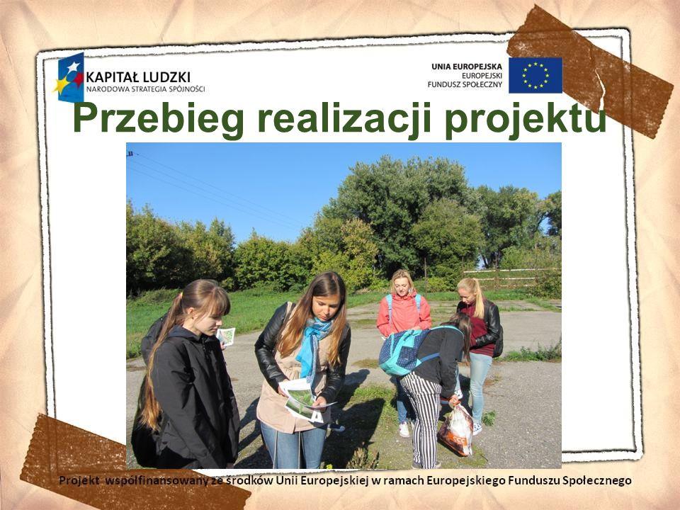 Klon jesionolistny (Acer negundo) Projekt współfinansowany ze środków Unii Europejskiej w ramach Europejskiego Funduszu Społecznego
