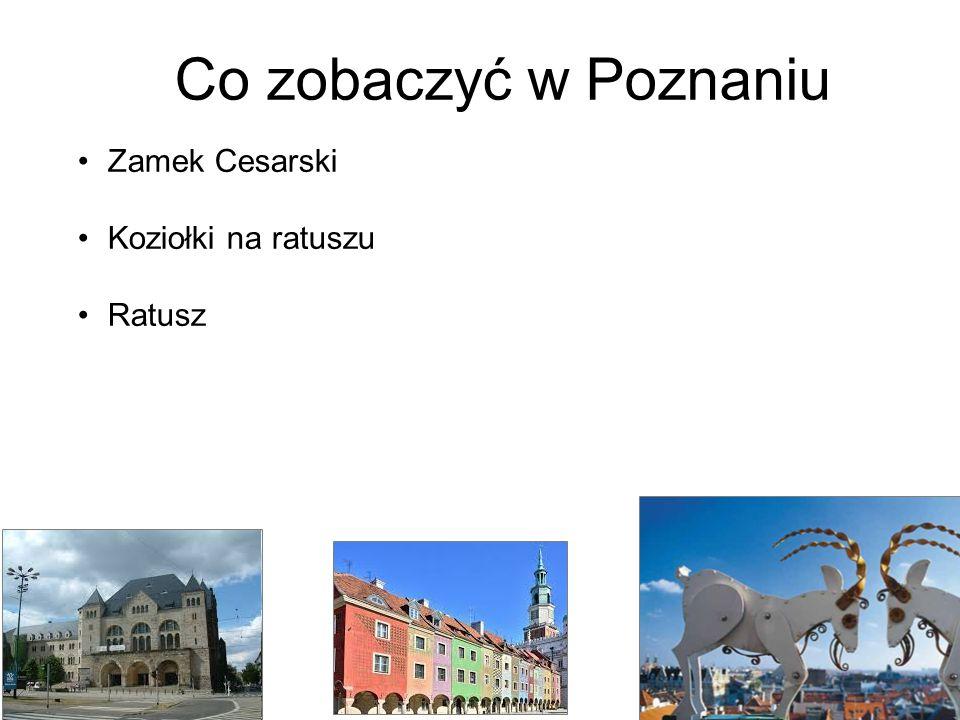 Co zobaczyć w Poznaniu Zamek Cesarski Koziołki na ratuszu Ratusz