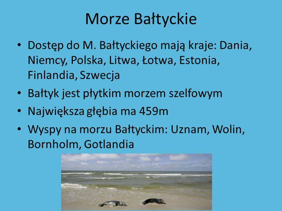 Morze Bałtyckie Dostęp do M. Bałtyckiego mają kraje: Dania, Niemcy, Polska, Litwa, Łotwa, Estonia, Finlandia, Szwecja Bałtyk jest płytkim morzem szelf