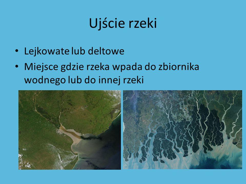 Ujście rzeki Lejkowate lub deltowe Miejsce gdzie rzeka wpada do zbiornika wodnego lub do innej rzeki