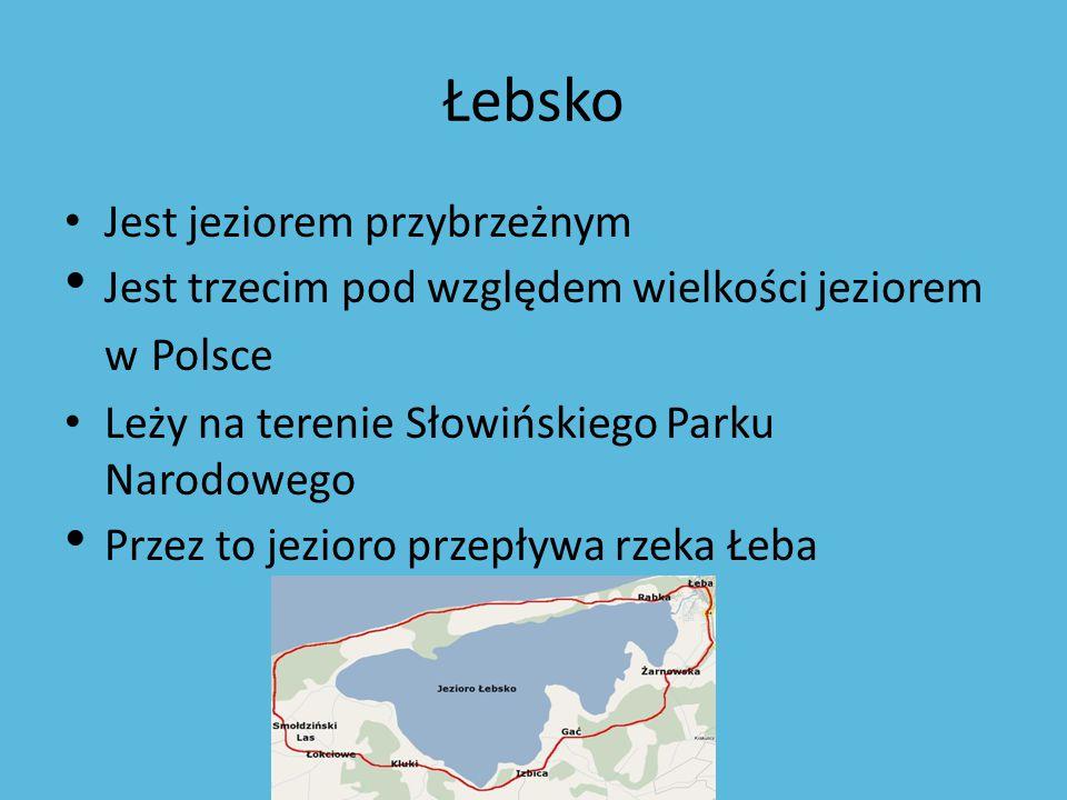 Łebsko Jest jeziorem przybrzeżnym Jest trzecim pod względem wielkości jeziorem w Polsce Leży na terenie Słowińskiego Parku Narodowego Przez to jezioro