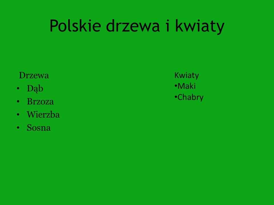 Polskie drzewa i kwiaty Drzewa Dąb Brzoza Wierzba Sosna Kwiaty Maki Chabry